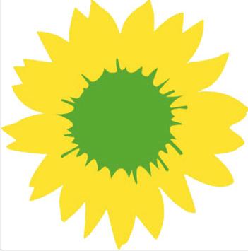 Kommunalwahl 2020: GRÜNE wählen Reserveliste und Bürgermeisterkandidat
